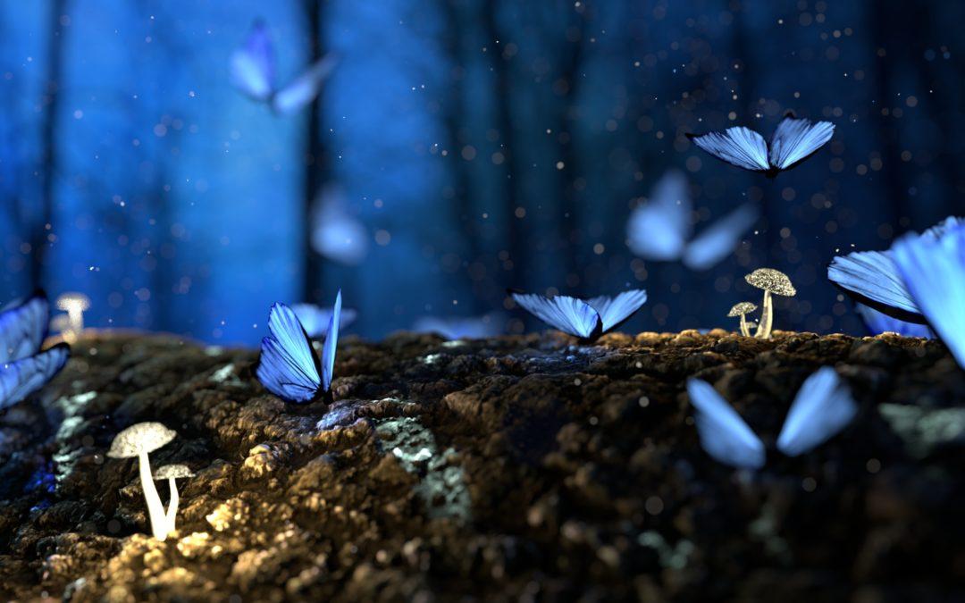 Le radici e le ali – Part I